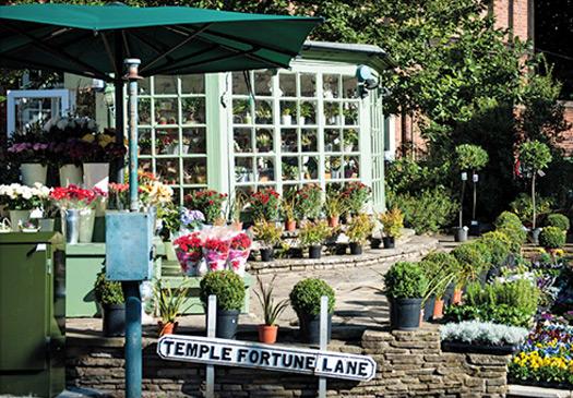 Temple Fortune Lane